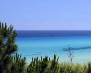free-beach-club-costa-rei-muravera-9442270.jpg