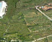 i-giardini-di-cala-ginepro-hotel-resort-cala-ginepro-8029446.jpg