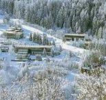 residence-lago-rotondo-marilleva-900-1.jpg
