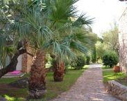 palmasera-village-resort-cala-gonone-3386134.jpg